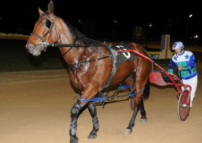 harness-racing-western-sydney