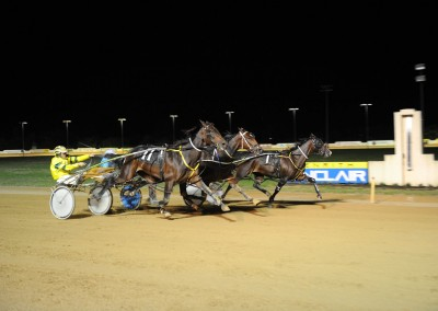 penrith-harness-race